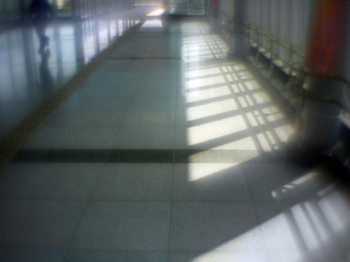 P1030822a.jpg