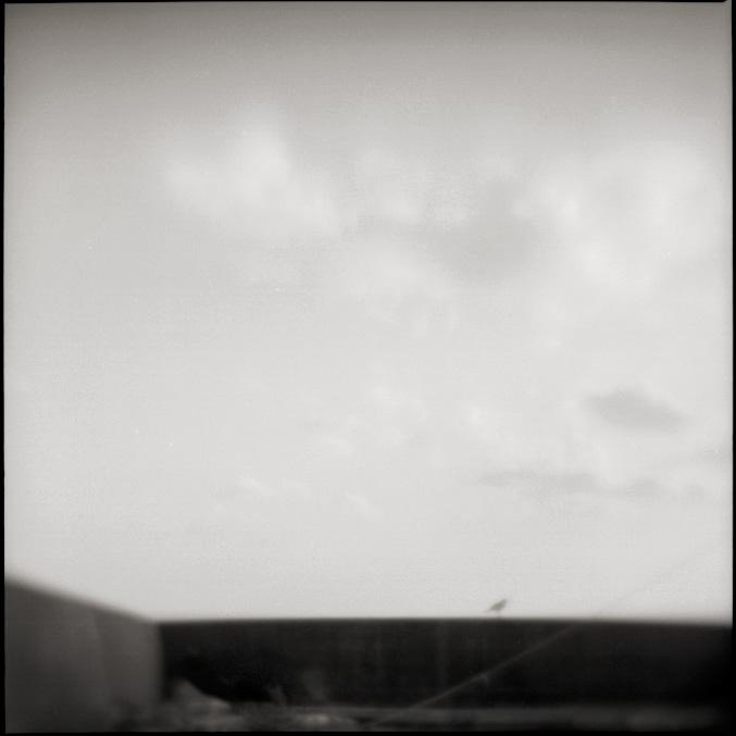 b083n.jpg